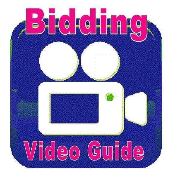 auction-expert-bidding-tutorial
